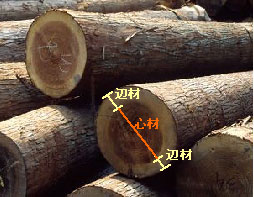 木造住宅9