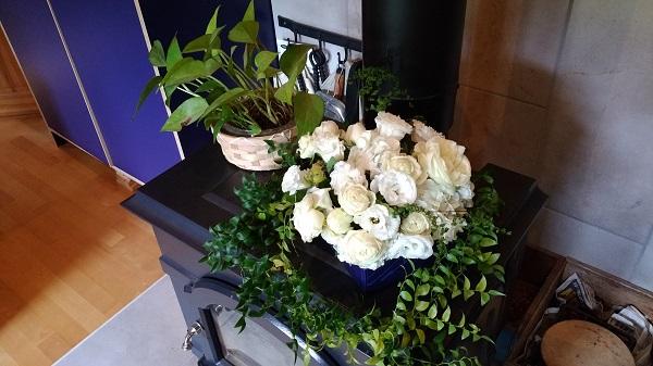 ログハウス協会 花