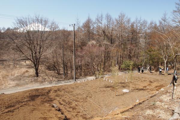 ホンカ 平井邸
